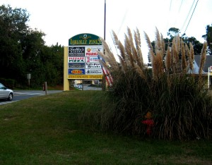 The shopping area at the Duck Road end of Poteskeet Drive.